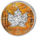 autumn silver maple leaf