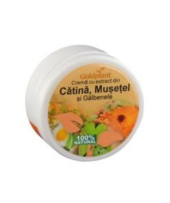 Crema de Catina, Musetel si Galbenele