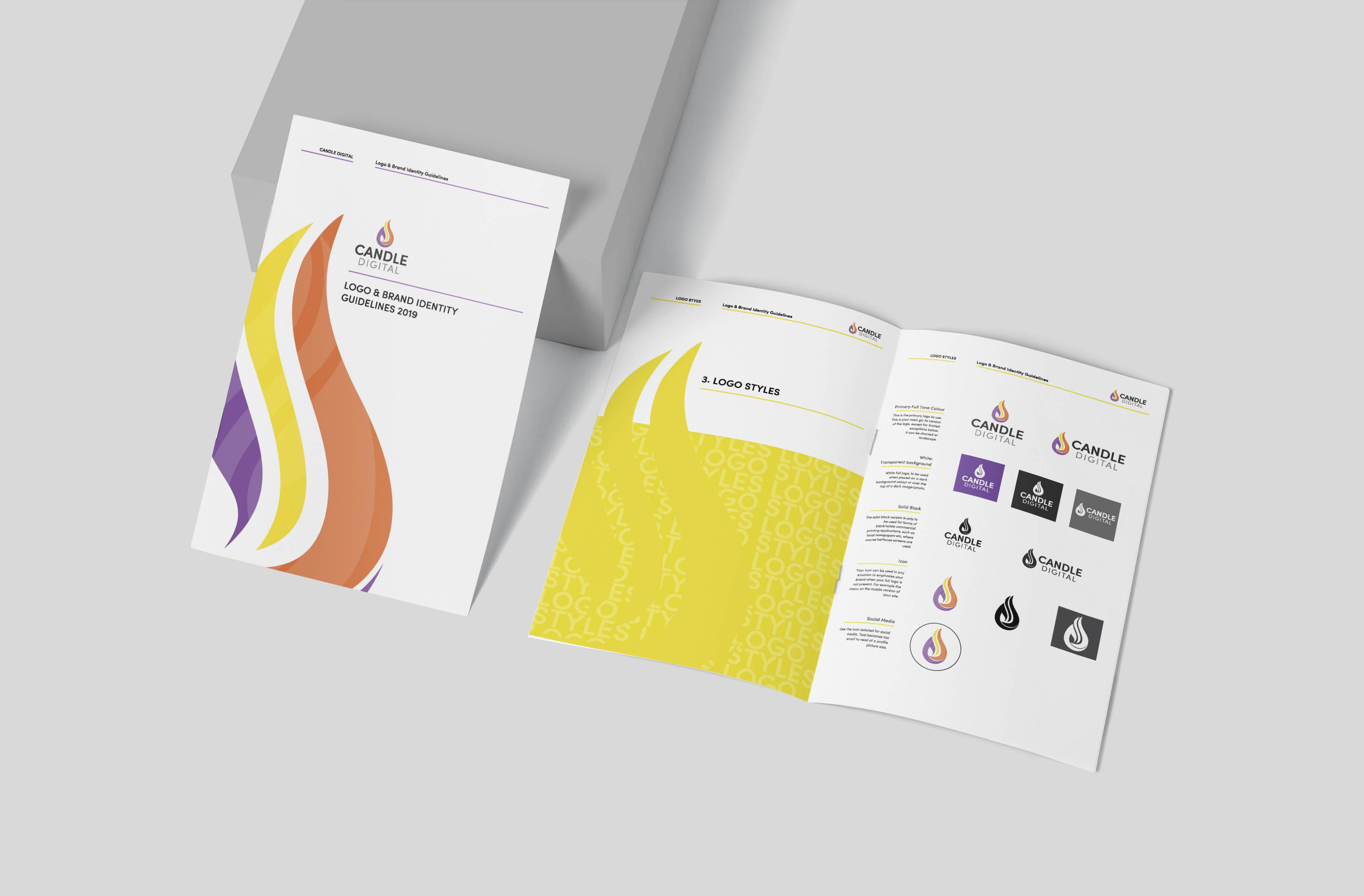 Company Brand Guidelines