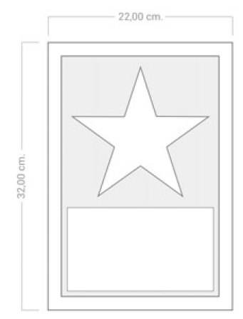 Star of Fame Record