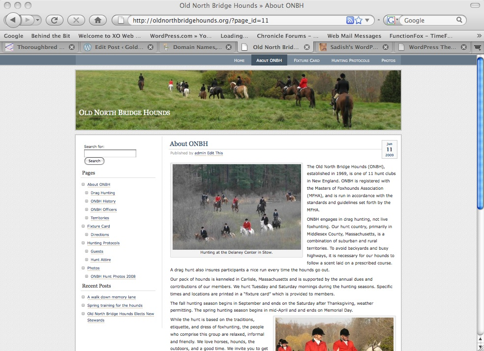 The template of the new site allows all sub-pages to be shown in the left hand navigation bar making it easier to find topics. It is easy to incorporate images into the pages and posts. I particularly like the dynamic nature of the blog format. Rather than having a static site, new posts can be easily added making the site more representative of the community.