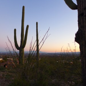 Tucson Metro Area – Goldsmith Real Estate