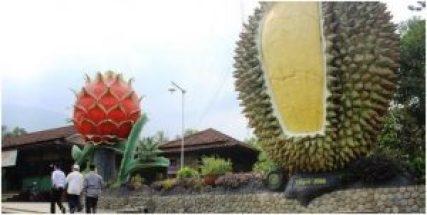 Hutan Durian Internasional