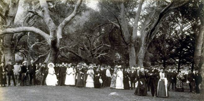 lawn-party1885
