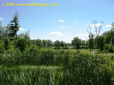 Lake_Forest_23