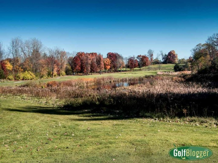 6th hole, The Grande, Jackson, Michigan