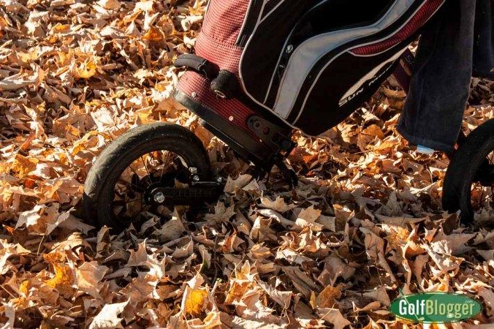 Deep leaves at Green Oaks.
