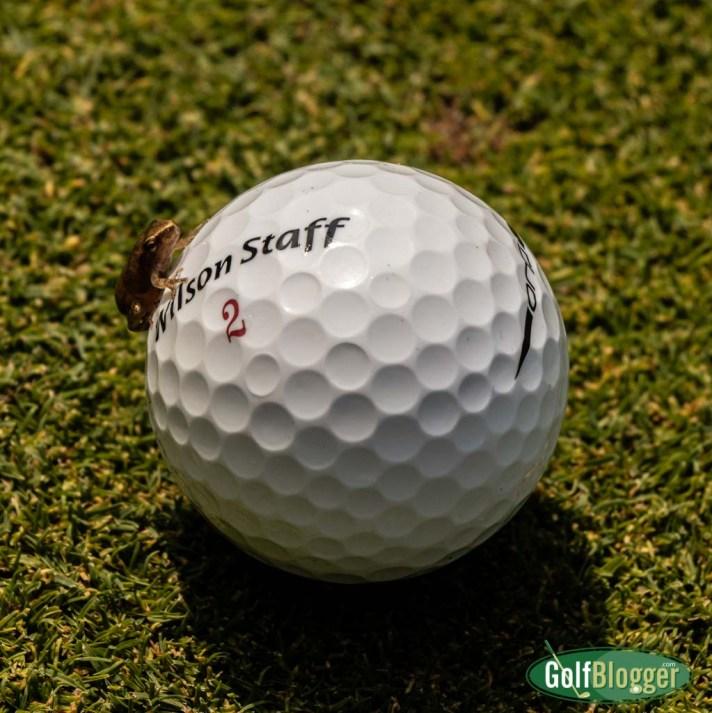 Frog On Golf Ball