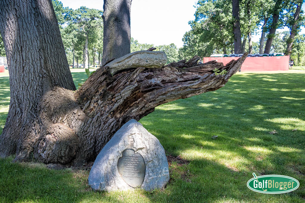 The Indian Trail Tree At Detroit Golf Club, Host Of The Rocket Mortgage Classic