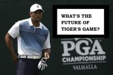 Whats the Future of Tiger's Game?