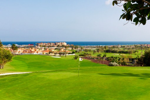 Fuerteventura Golf Club-16485