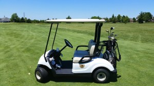 Best 12 Volt Golf Cart Batteries 2019 - Golf Squawk