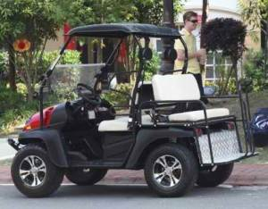 Electric Golf Cart Hybrid UTV HJS-EV5 Big Horn