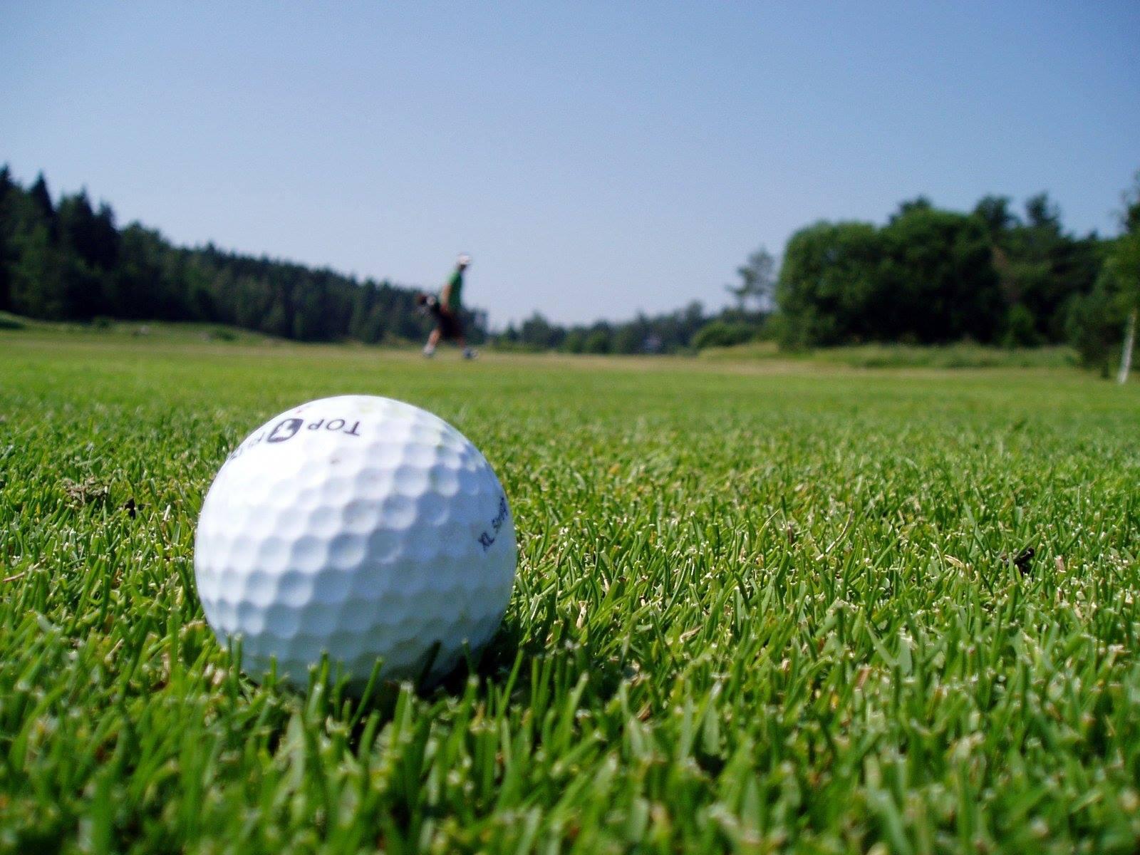 Tinley Park Golf Show