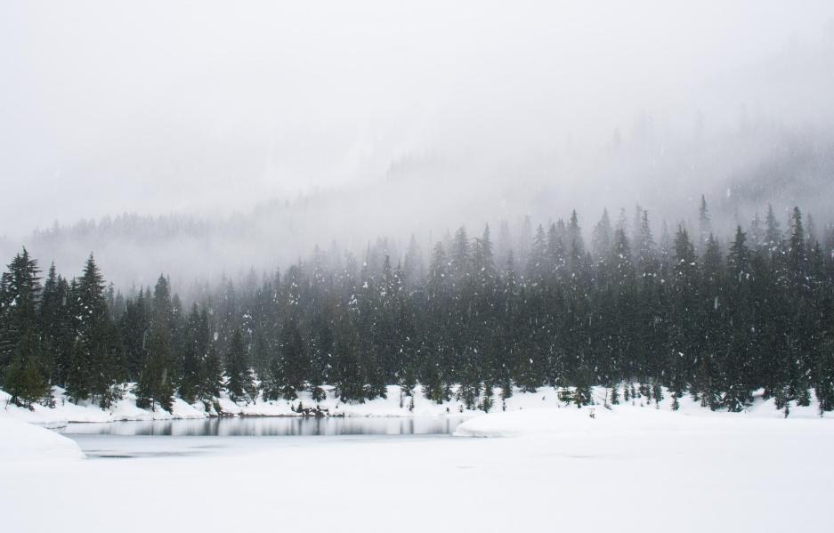 Golf Course Winter Snow Golf Tournaments