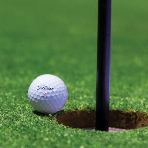 golfchip