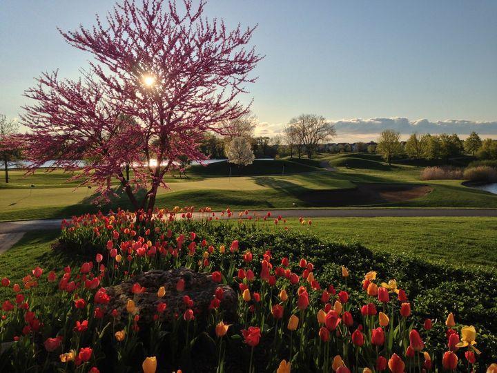 DMF IL 7th Annual Golf Outing & Dinner Gala 2021