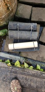 Photo of drain pipe cichlid hotel.