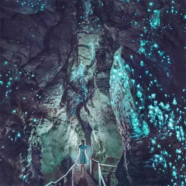Ruakuri Cave