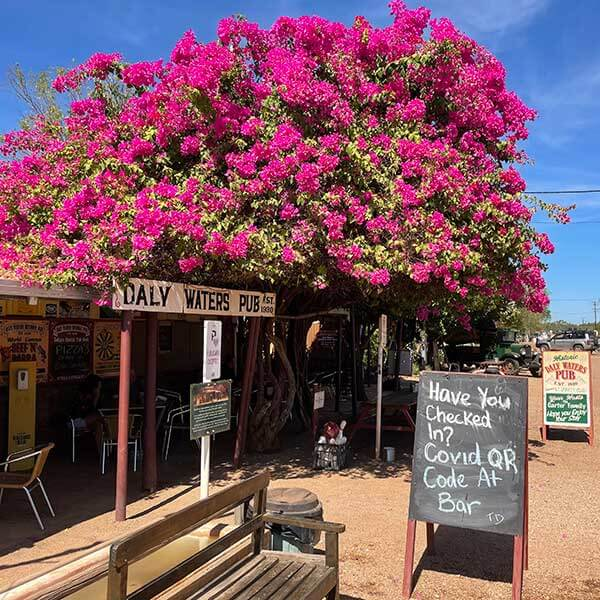 The Daly Waters Pub, Northern Territory