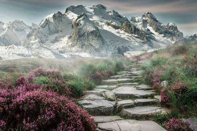 Purple and mountain majesty – Go Hiking