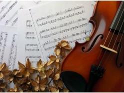 """Violin and dried flowers"", © Golnaran, 2015."