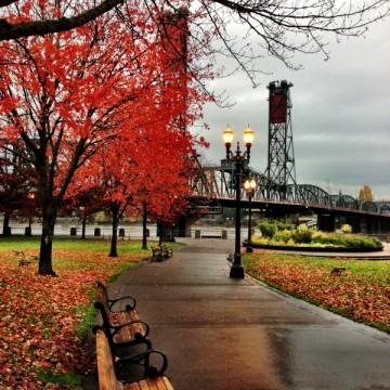 Thanksgiving Fall Wallpaper Golocalpdx Ten Reasons Why Portlanders Love Wet And