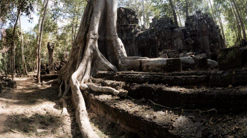 Ta Nei, Cambodia