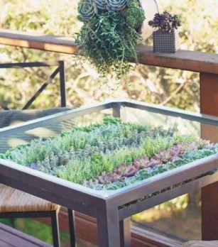 zöldnövényes asztal