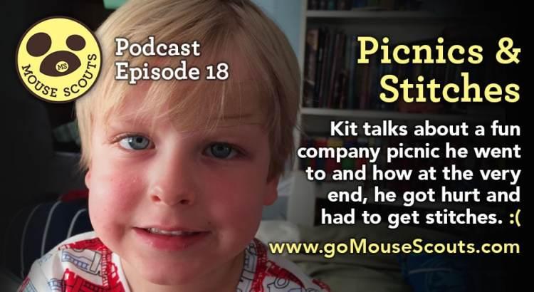 Episode-018-Picnics-and-Stitches