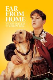Far from Home: The Adventures of Yellow Dog (1995) เพื่อนรักแสนรู้