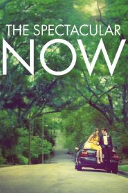 The Spectacular Now (2013) ใครสักคนบนโลกใบนี้