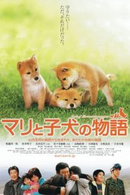 A Tale of Mori and Three Puppies (Mari to koinu no monogatari) (2007) เพื่อนซื่อ ชื่อ มาริ