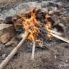 枯れ竹を燃やす