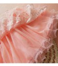 Children Girls Tutu Mini Skirt Ballet Tulle Lace Dress