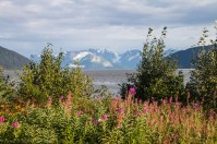 Turnagain Arm is just beautiful in the summer sun!