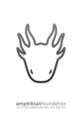 The_Amphibian_Foundation_LOGO_slogan