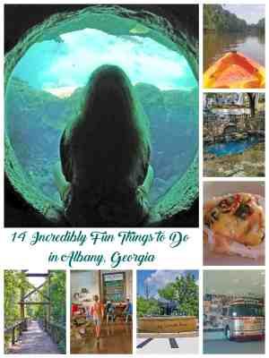 best things to do in albany ga