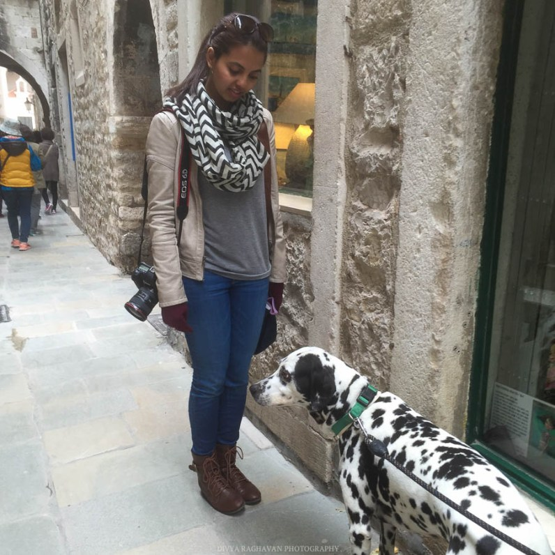 Making dalmatian friends on the Dalmatian coast of Croatia // Photos and stories from a week in Croatia // Memories from the Balkans // Dubrovnik, Split, and Zagreb