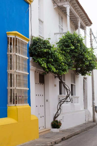 The colorful walls of colonial Cartagena, Colombia // Photos to inspire a visit to Colombia