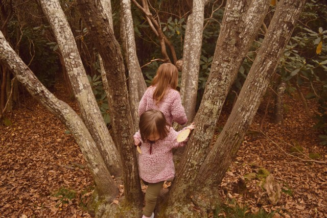 my daughters climbing in a tree