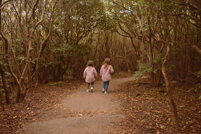 my daughters walking through the trees on the trail