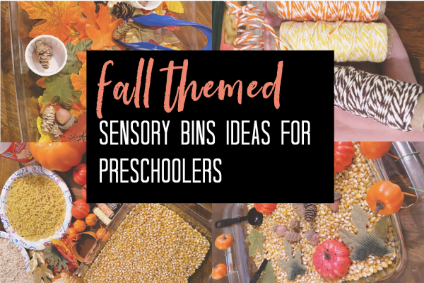 30+ Fall Sensory Bin Ideas To Try This Year