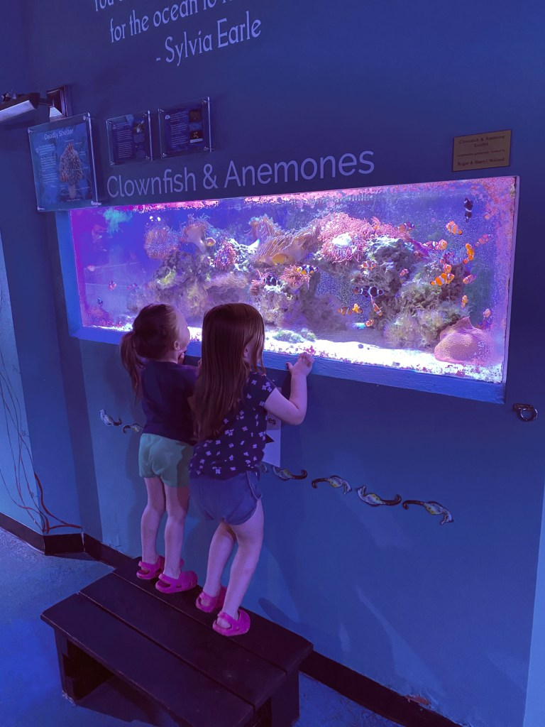 aquarium in south south dakota with kids