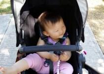 Uppa Baby Cruz Stroller
