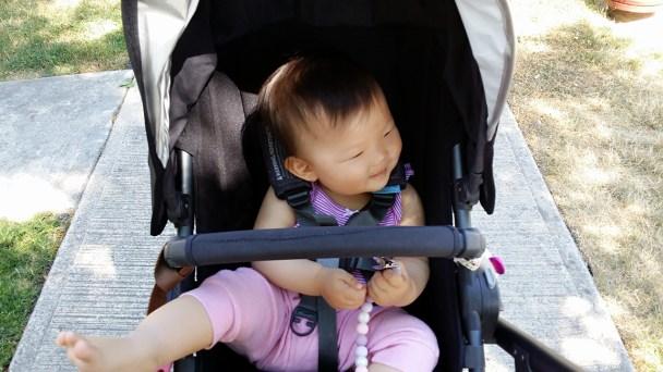 Best Stroller Uppa Baby Cruz
