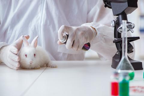 Types of Animal Testing