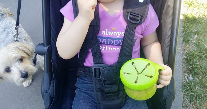 Baby Jogger City Tour Review - Safety Harness