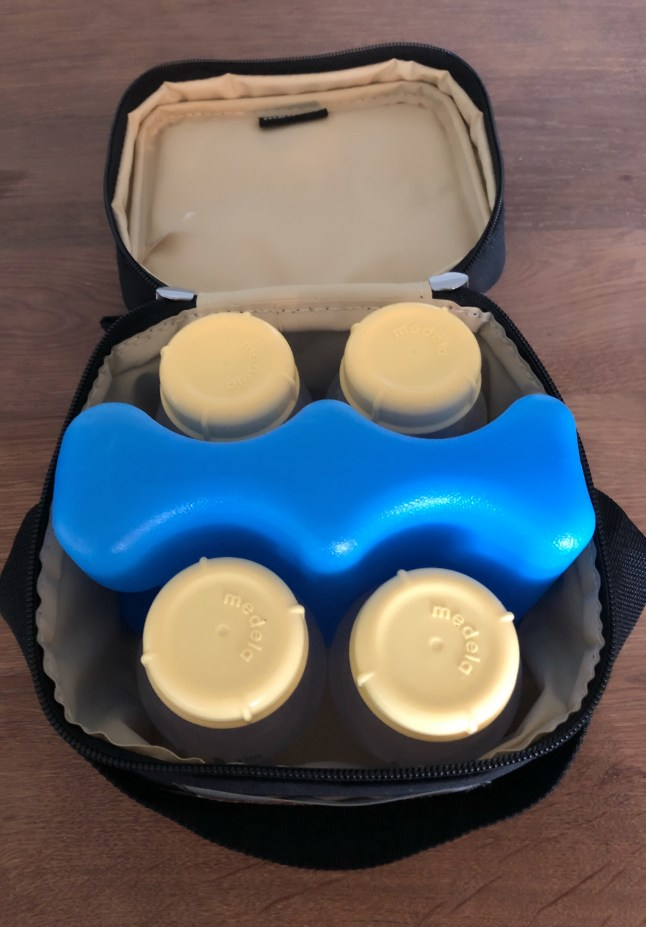 Medela Pump In Style Review - Carrying Cooler Bag and Ice Pack