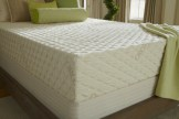 Organic Latex Mattress - PlushBeds Natural Bliss Organic Latex Mattress